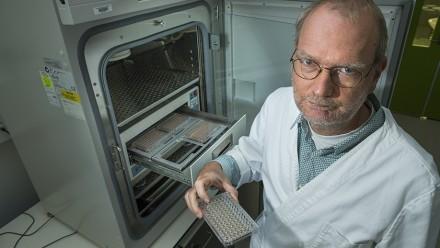Professor Stefan Bröer
