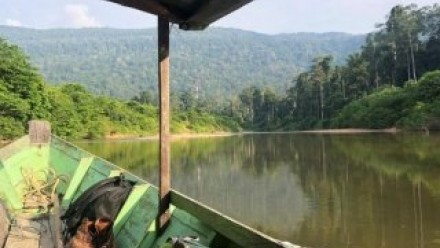 Endau Rompin boat ride. Image Claire Howard-Bryan.