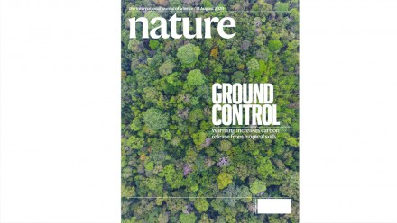 Nature Cover 584