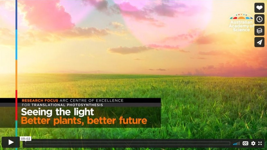 Video: Seeing the light: Better plants, better future