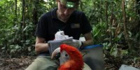 George Olah and Scarlet Macaw