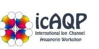 ICAQP logo