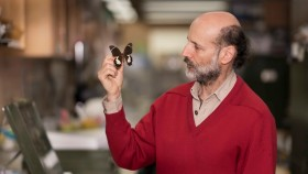 Expert entomologist Michael Braby with butterfly