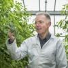 Professor Graham Farquhar. Image: Stuart Hay